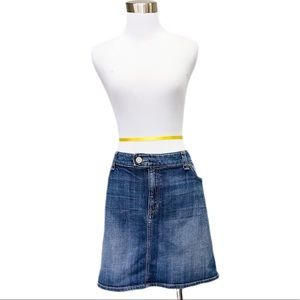 GAP plus size denim skirt